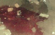 रावण सेना टोळी प्रमुख अनिकेत जाधव याचा आकुर्डीत दगडाने ठेचून खून