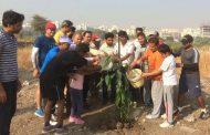 कैलास कुंजीर मित्र परिवाराच्या वतीने पिंपळे सौदागरमध्ये वृक्षारोपण