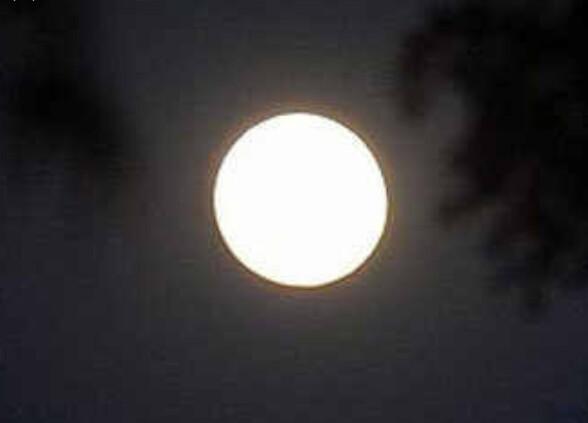 कोजागिरी पोर्णिमेसाठी महापालिकेची उद्याने आज रात्री १२ वाजेपर्यंत खुली राहणार