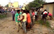 'डुक्कर मुक्त' पिंपरी चिंचवड मोहिम; महापालिकेने एकाच दिवशी पकडली १०८ डुकरे
