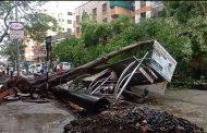 पिंपळे गुरवमधील काटे पुरम चौकात झाड रस्त्यावर कोसळले; रिक्षासह दुचाकीचे मोठे नुकसान